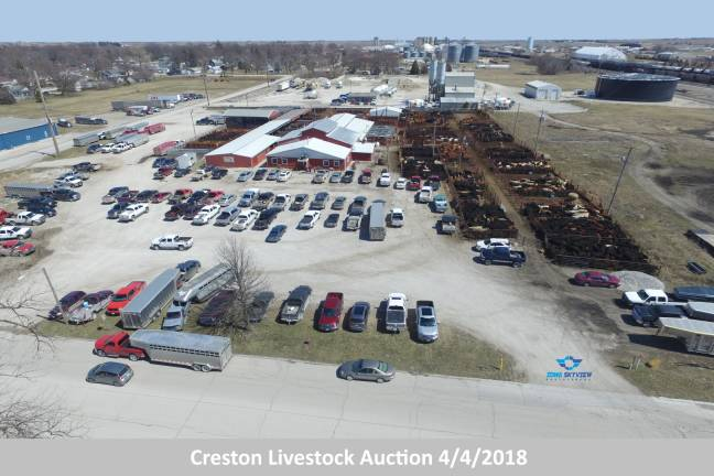 Creston Livestock Auction
